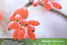 Календарь настенный 2009 год санаторий Алтай-West_декабрь