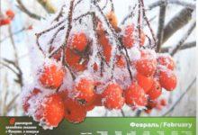 Календарь настенный 2009 год санаторий Алтай-West_февраль