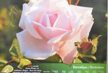 Календарь настенный 2009 год санаторий Алтай-West_октябрь