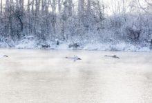 Экскурсия на Лебединое озеро Алтайский край Фотограф Александр Крутев_11
